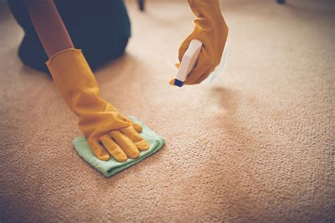 Stain Removal Guide Clothes Carpet and Upholstery