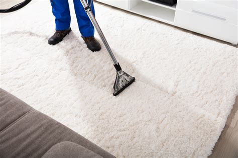 Steam Carpet Cleaners in Fort Lauderdale FL Hotfrog US