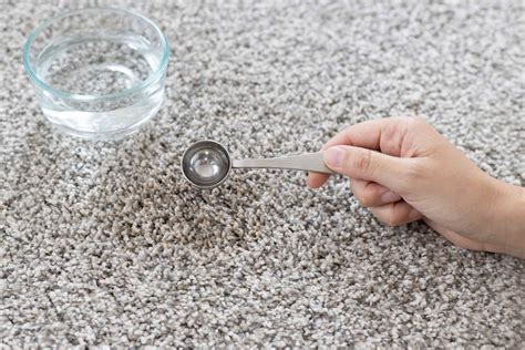 The Cause of Reappearing Carpet Stains The Spruce