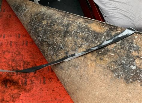 The Squeaky Clean Team Carpet Cleaning Melbourne