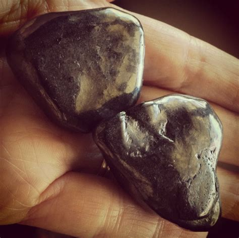 The Ultimate Guide to Shungite Hibiscus Moon Crystal
