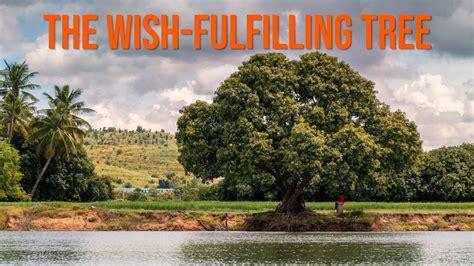 The Wish Fulfilling Tree Lotsawa House