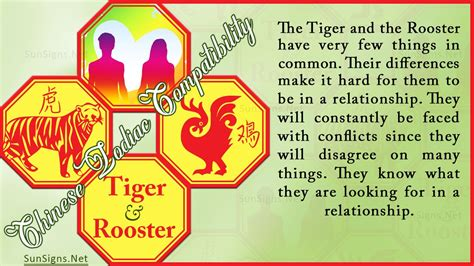 Tiger and Rooster Chinese compatibility horoscope for a