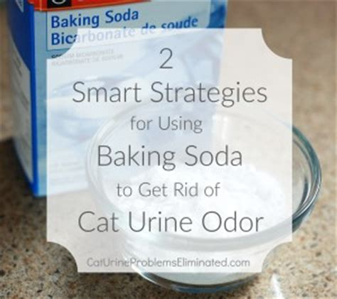 Tips on Using Baking Soda for Cat Urine Odor Removal Cat