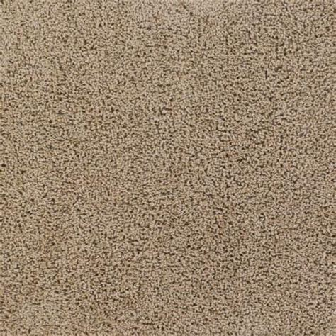 Tranquility Amaretto Texture 24 in x 24 in Carpet Tile