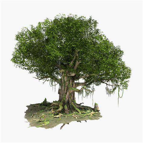 Tree 3D Models Free 3D Tree download