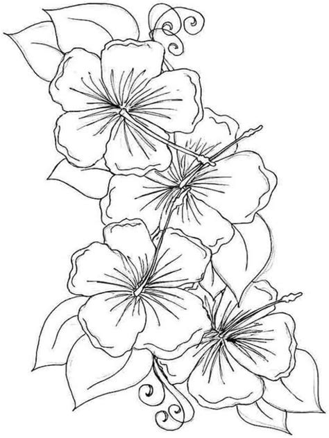 Tropical flowers coloring pages Free Printable Pictures