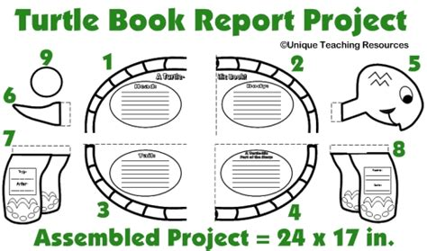 Turtle Book Report Project templates printable