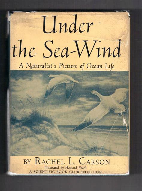 Under the Sea Wind Rachel Carson The Life and Legacy