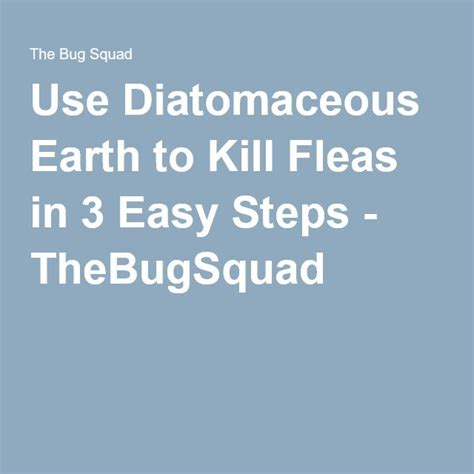Use Diatomaceous Earth to Kill Fleas in 3 Easy Steps
