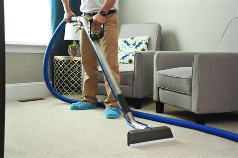 Warwick Carpet Cleaners Professional Carpet Cleaning