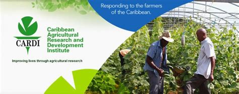 Welcome to CARDI Caribbean Agricultural Research