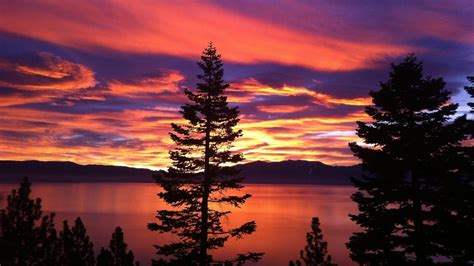 What You Can Actually Do to Fight Climate Change