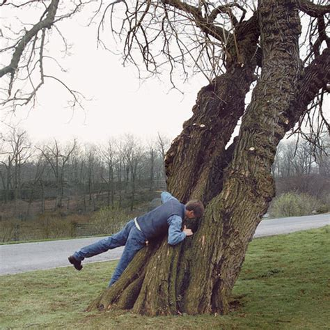 What s Wrong with That Tree Fine Gardening