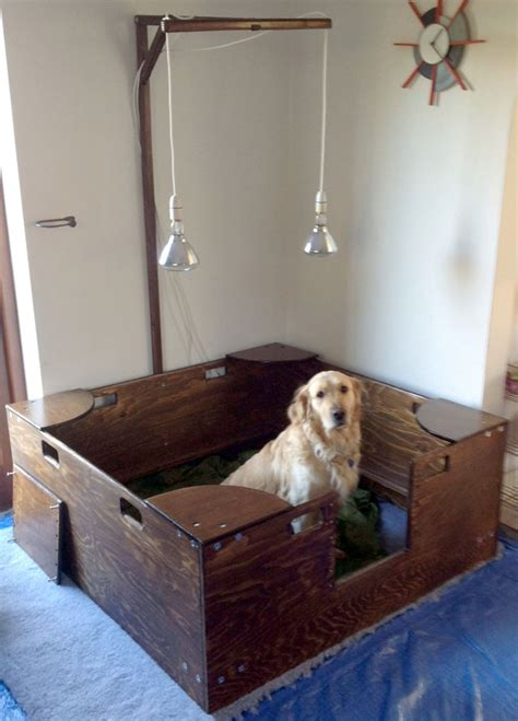 Whelping Box Ideas Golden Retrievers