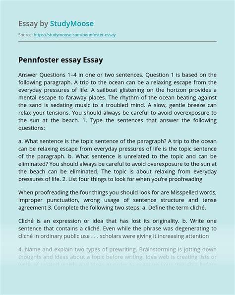 my favorite personality essay custom essay writing