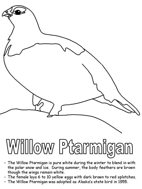 Willow ptarmigan coloring page Free Printable Coloring Pages