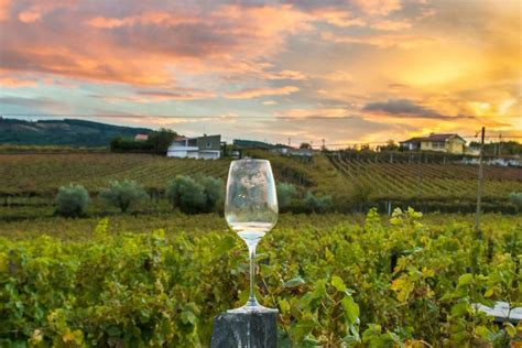 Wineries Napa Valley California Wine Country Travel