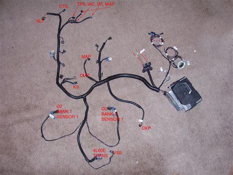 Wiring information for 1998 to 2002 Camaro Firebird LS1