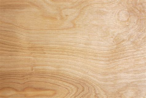 Wood Grain Texture The Wood Database