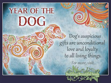 Year of the Dog Chinese Zodiac Dog