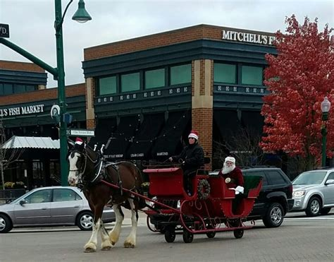 Yellow Rose Carriages 634 3400