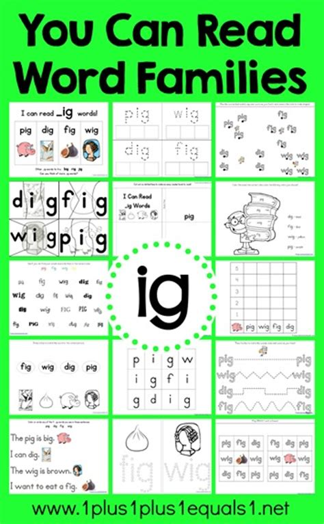 You Can Read Word Families IG Word Family Printables