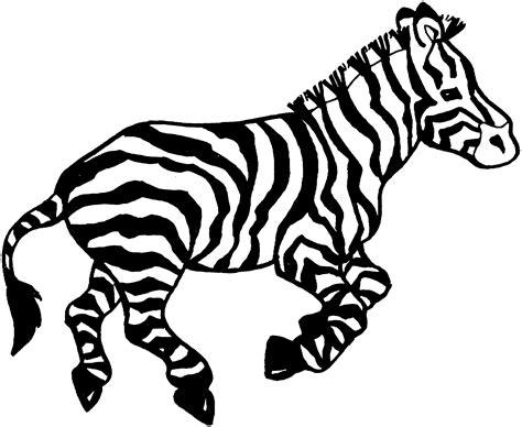 Zebra coloring page Etsy