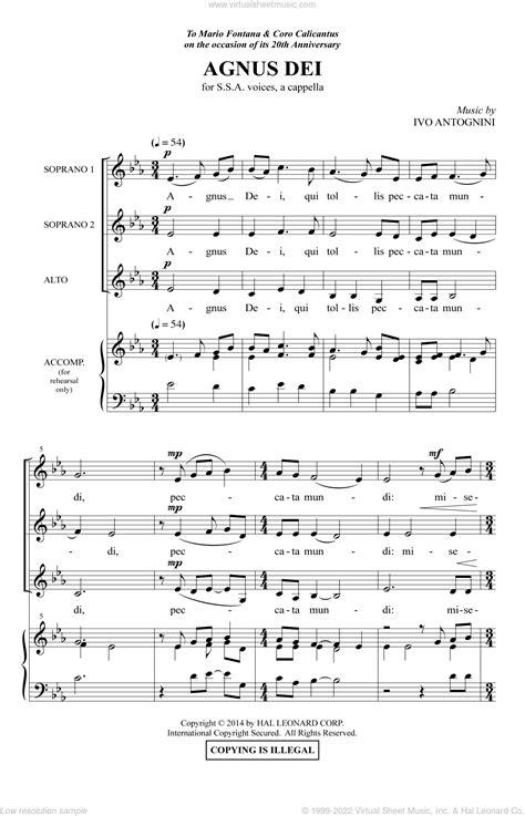 Agnus Dei Ssa  music sheet
