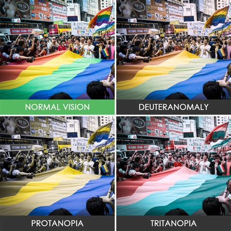 different types of color blindness Bored Panda