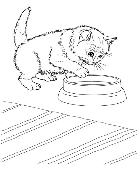 kittens Coloring Pages Free and Printable