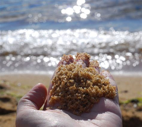 making your geese fly a handmade life