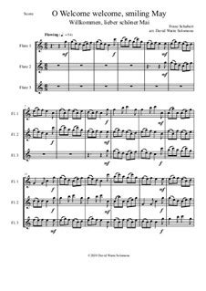 Prithee Be Nt So Sad And Serious For 3 Flutes  music sheet