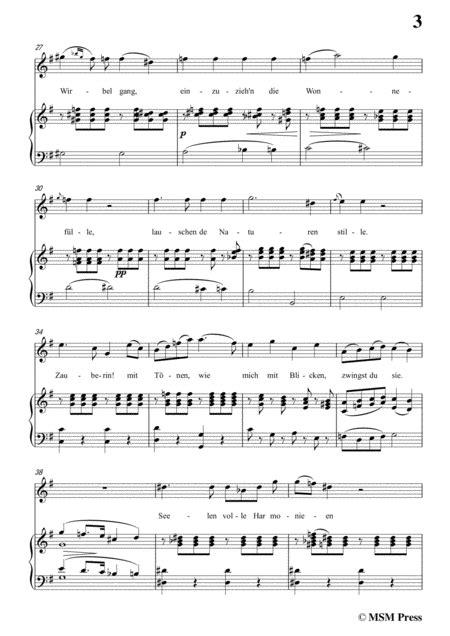 Schubert An Laura In D Major For Voice Piano  music sheet