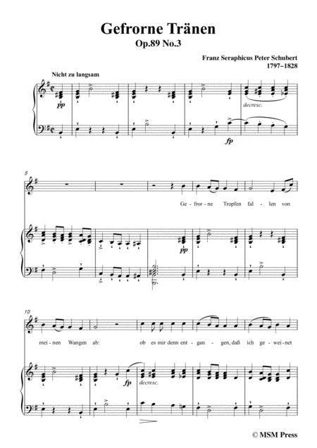 Schubert Gefrorne Trnen From Winterreise Op 89 D 911 No 3 In F Sharp Minor For Voice Piano  music sheet