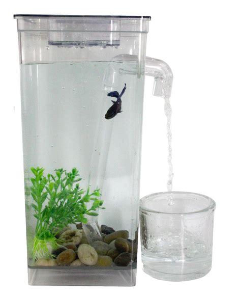 self cleaning fish tanks Fish Tank Advisor