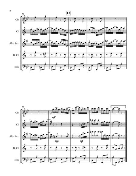 The Ragtime Dance For Reed Quintet  music sheet