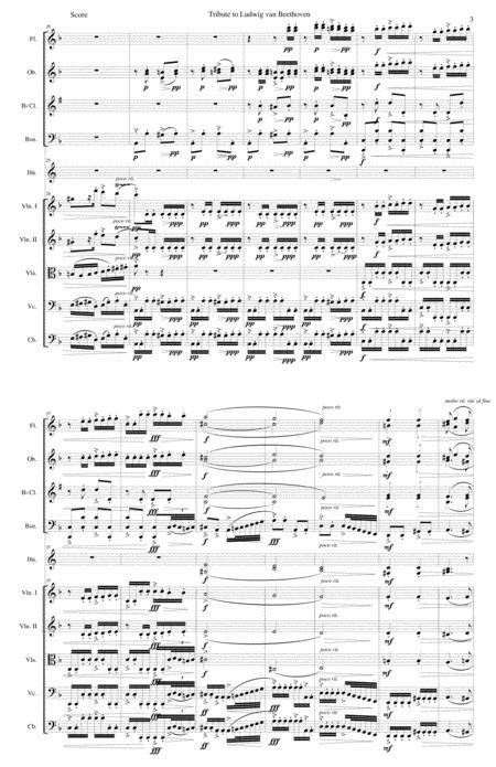Tribute To Ludwig Van Beethoven For Chamber Orchestra  music sheet
