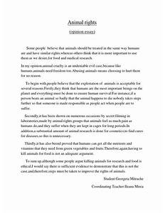 Argumentative Essay Animal Testing  An Academic Essays Guide To  Against Animal Testing Essay Animal Testing Essays Ielts Essay Tosanrionica  What Is A Character Analysis Essay