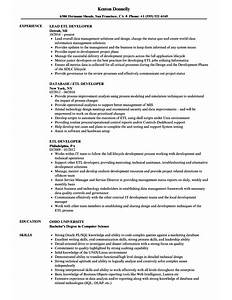 etl developer sample resume medical interpreter resume software sample etl teradata developer resume