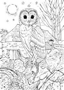 Coloring pages for adults – printable coloring