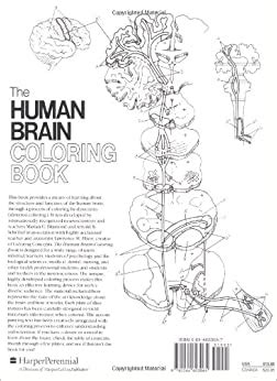 0064603067 The Human Brain Coloring Book