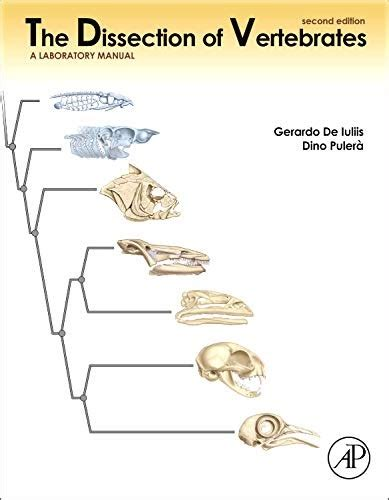 0123750601 The Dissection Of Vertebrates