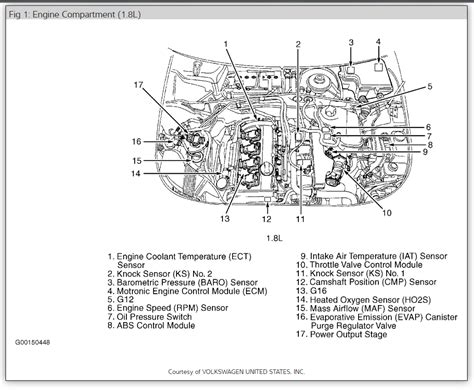 2003 Vw Passat Engine Diagram Wiring Diagram Visual Visual Cfcarsnoleggio It