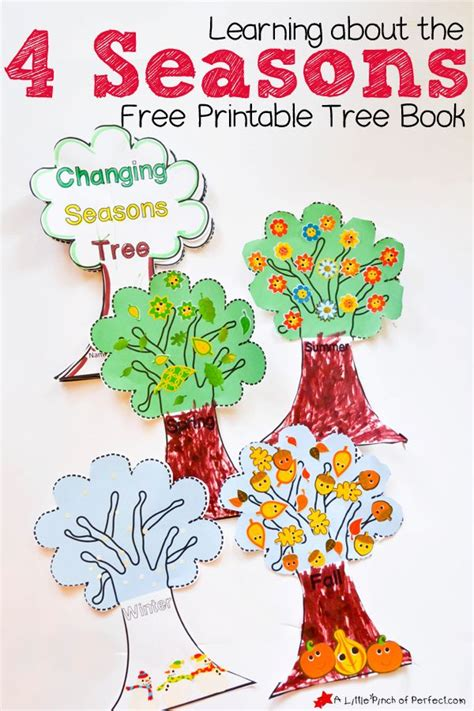 A Time To Fall Love By The Seasons Book 1
