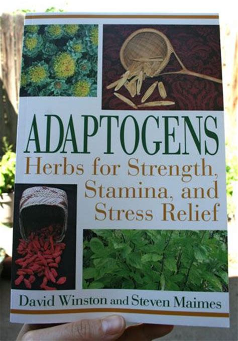 Adaptogens Herbs For Strength Stamina And Stress Relief