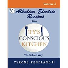 Alkaline Electric Recipes From Tys Conscious Kitchen The Sebian Way Volume 4 67 Alkaline Electric Recipes Using Sebian Approved Ingredients