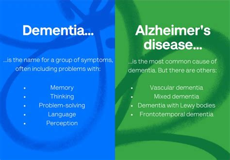 Alzheimer What Is The Difference From Alzheimers And Dementia English Edition