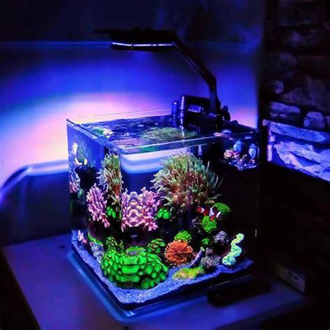 Aquarium Supplies Fish Tanks and LED Lights Marine Depot