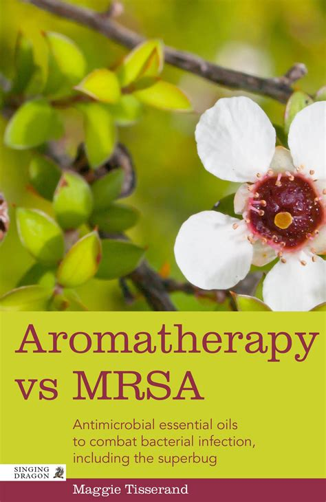 Aromatherapy Vs Mrsa Antimicrobial Essential Oils To Combat The Superbug